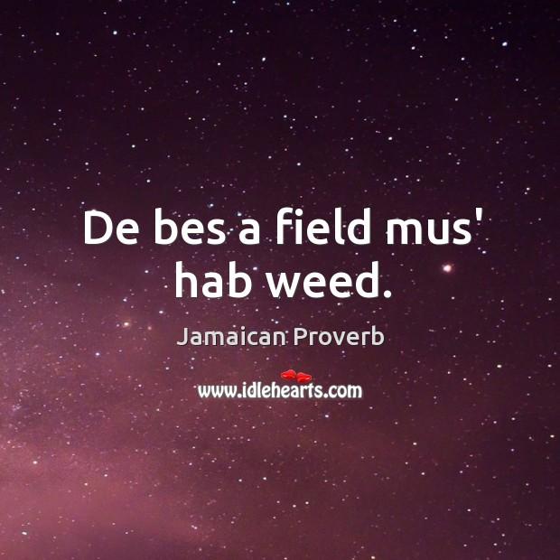 Image, De bes a field mus' hab weed.
