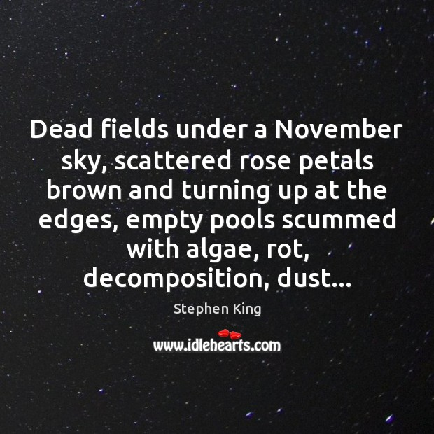 Image, Dead fields under a November sky, scattered rose petals brown and turning