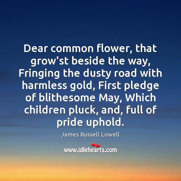 Dear common flower, that grow'st beside the way, Fringing the dusty road James Russell Lowell Picture Quote