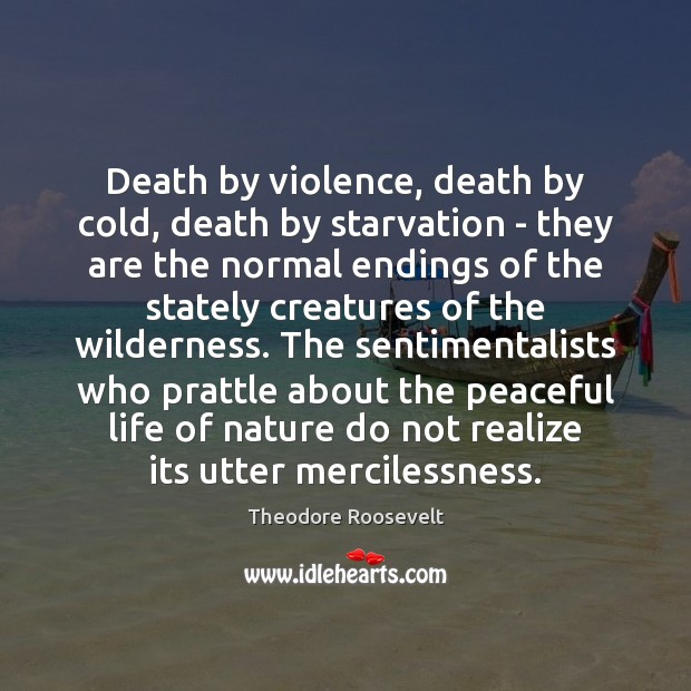 Death by violence, death by cold, death by starvation – they are Theodore Roosevelt Picture Quote