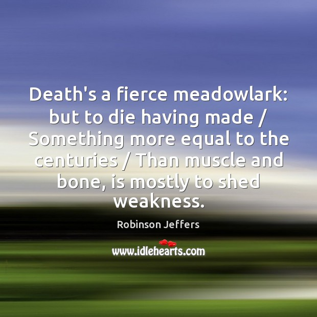 Image, Death's a fierce meadowlark: but to die having made / Something more equal