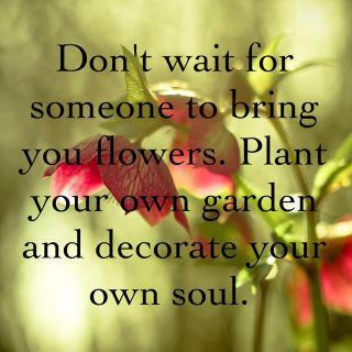 Image, Don't wait for others to bring you flowers.