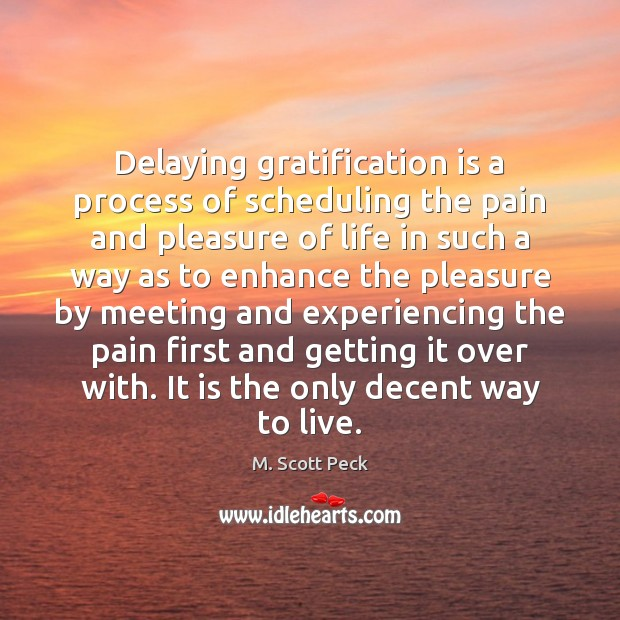 Delaying gratification is a process of scheduling the pain and pleasure of M. Scott Peck Picture Quote