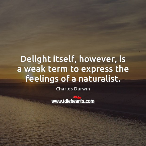 Image, Delight itself, however, is a weak term to express the feelings of a naturalist.