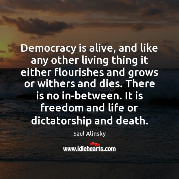 Democracy is alive, and like any other living thing it either flourishes Saul Alinsky Picture Quote