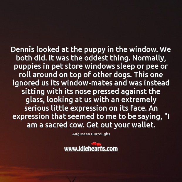 Dennis looked at the puppy in the window. We both did. It Image