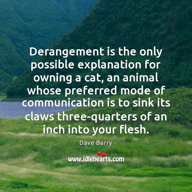 Image, Derangement is the only possible explanation for owning a cat, an animal