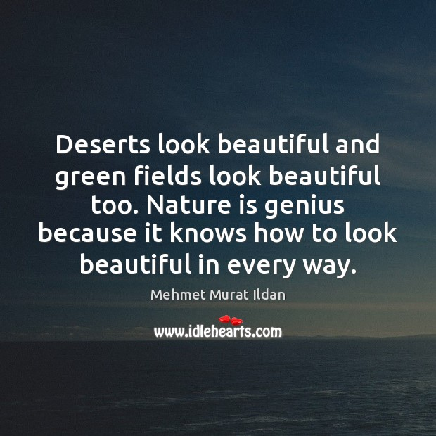 Deserts look beautiful and green fields look beautiful too. Nature is genius Image