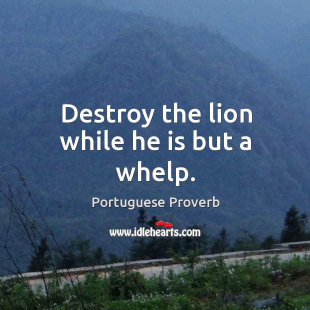 Destroy the lion while he is but a whelp. Image
