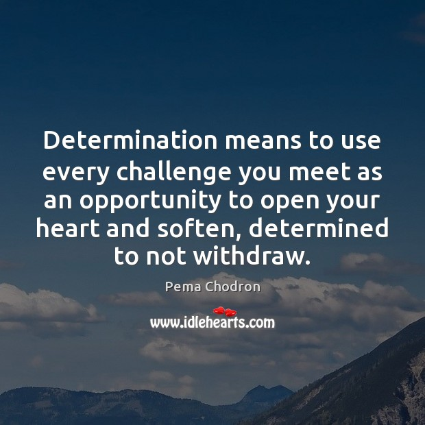 Determination means to use every challenge you meet as an opportunity to Image