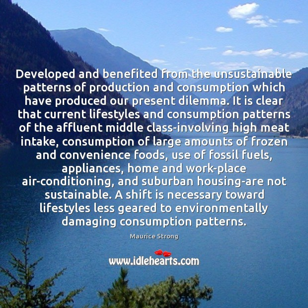 Developed and benefited from the unsustainable patterns of production and consumption which Image
