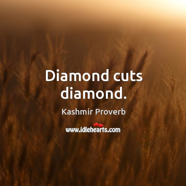 Diamond cuts diamond. Kashmir Proverbs Image