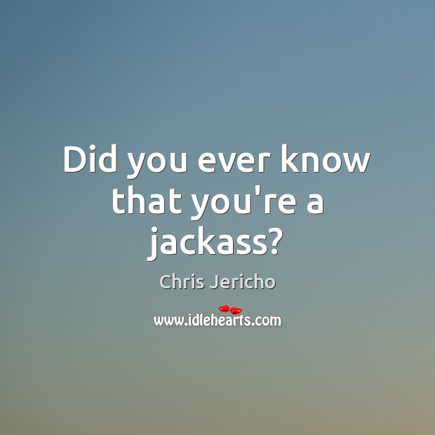 Did you ever know that you're a jackass? Chris Jericho Picture Quote