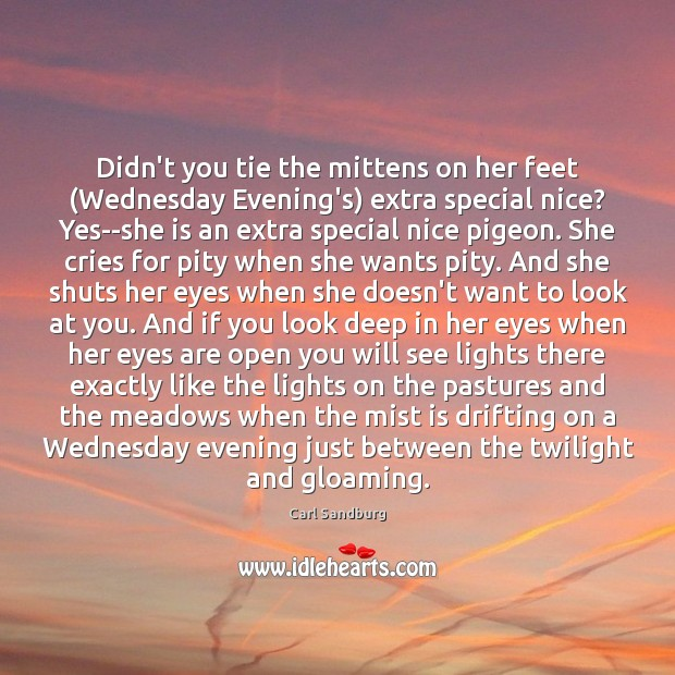 Didn't you tie the mittens on her feet (Wednesday Evening's) extra special Carl Sandburg Picture Quote