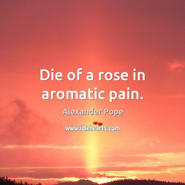 Die of a rose in aromatic pain. Image