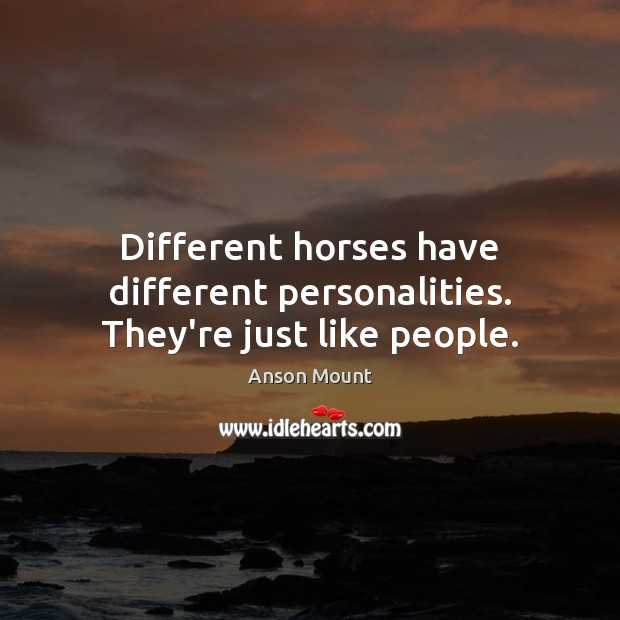 Image, Different horses have different personalities. They're just like people.