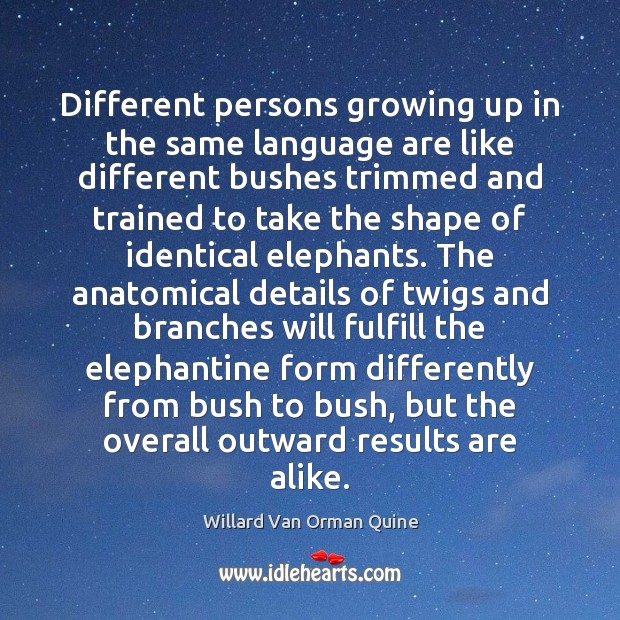 Different persons growing up in the same language are like different bushes Willard Van Orman Quine Picture Quote