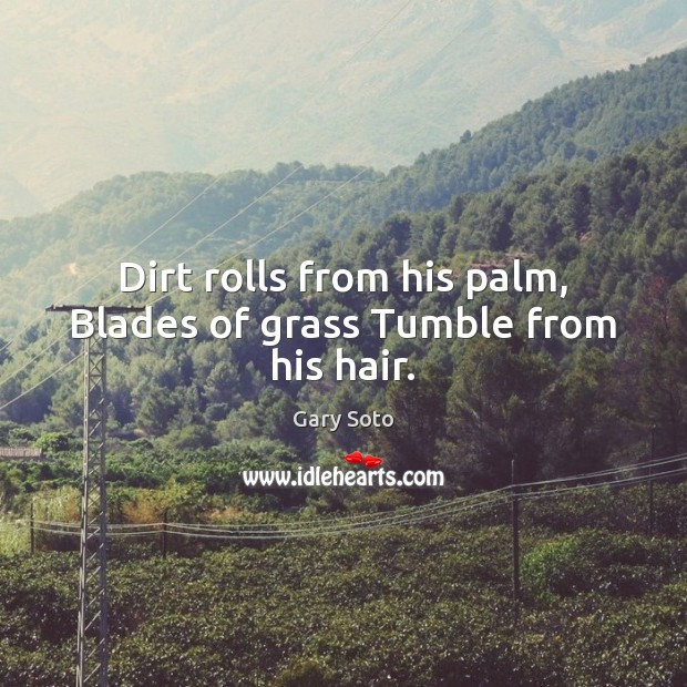 Dirt rolls from his palm, Blades of grass Tumble from his hair. Gary Soto Picture Quote