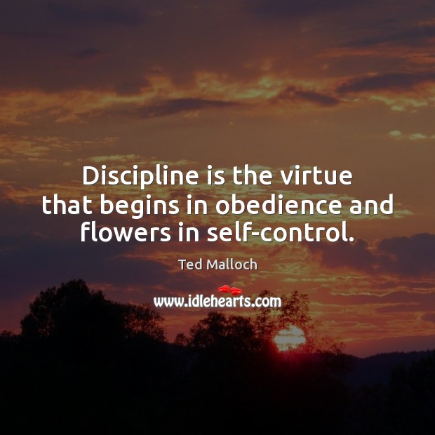 Discipline is the virtue that begins in obedience and flowers in self-control. Ted Malloch Picture Quote