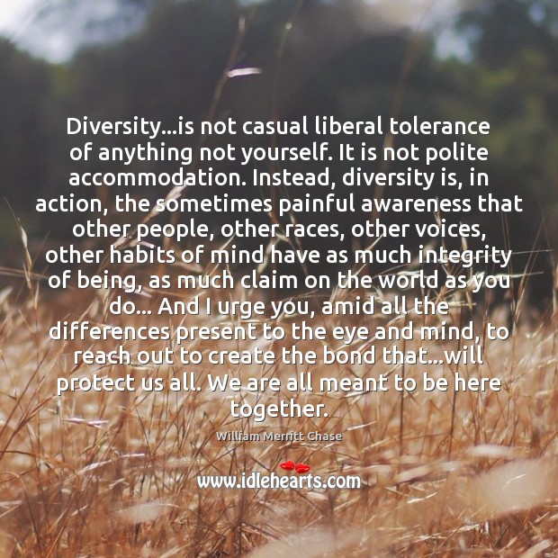 Image, Diversity…is not casual liberal tolerance of anything not yourself. It is