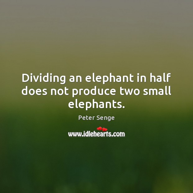 Dividing an elephant in half does not produce two small elephants. Peter Senge Picture Quote