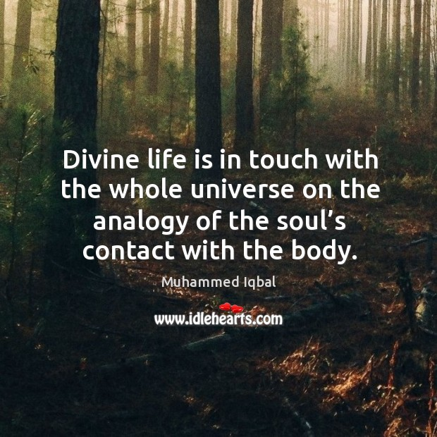 Divine life is in touch with the whole universe on the analogy of the soul's contact with the body. Image