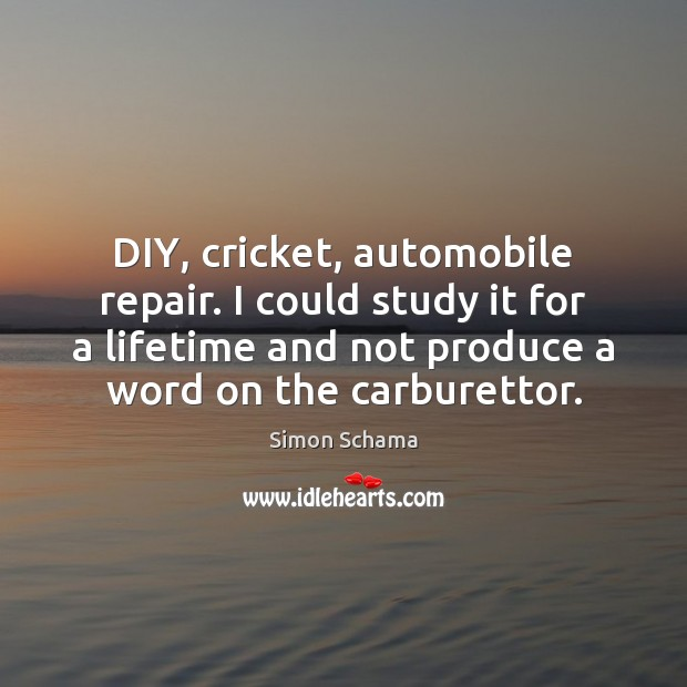 DIY, cricket, automobile repair. I could study it for a lifetime and Simon Schama Picture Quote