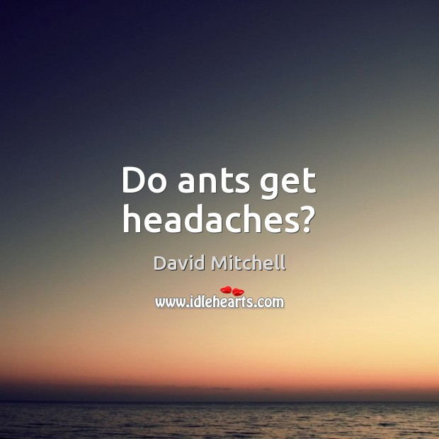Do ants get headaches? David Mitchell Picture Quote