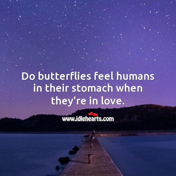 Do butterflies feel humans in their stomach when they're in love. Funny Quotes Image