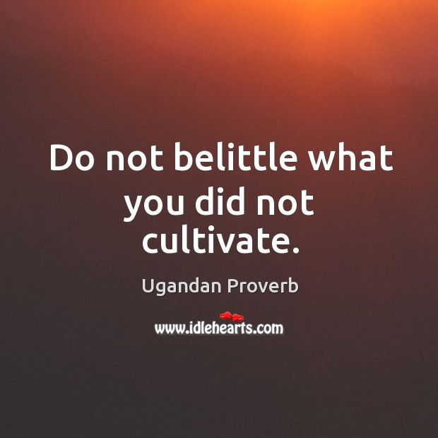 Do not belittle what you did not cultivate. Ugandan Proverbs Image