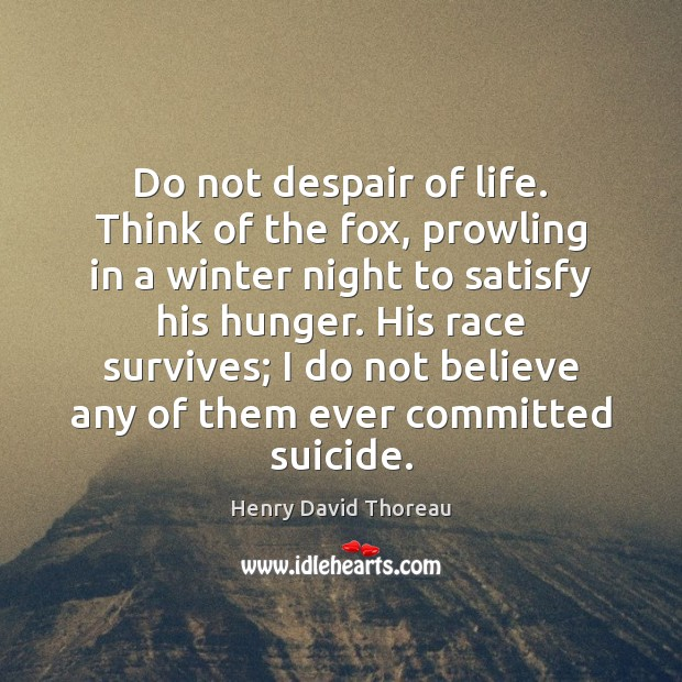 Do not despair of life. Think of the fox, prowling in a Image