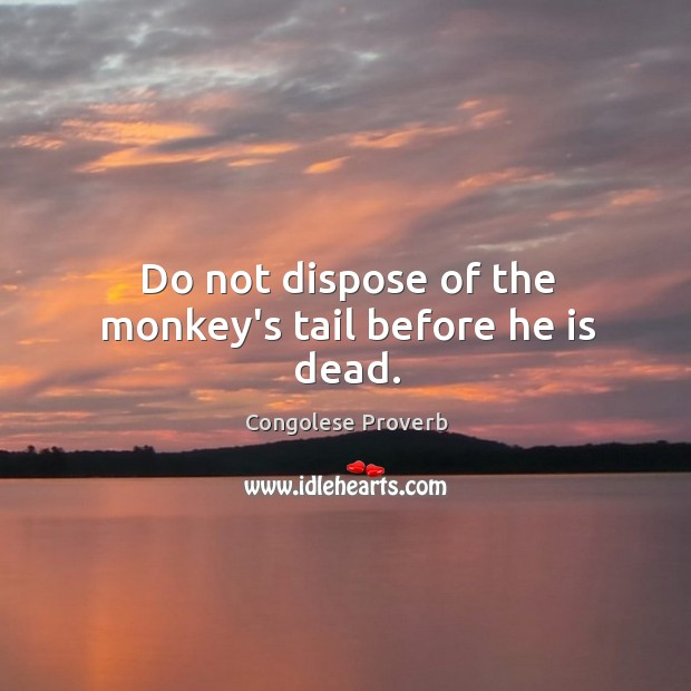 Do not dispose of the monkey's tail before he is dead. Congolese Proverbs Image