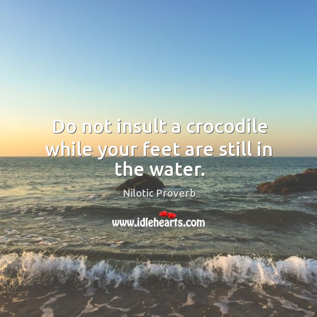 Do not insult a crocodile while your feet are still in the water. Nilotic Proverbs Image