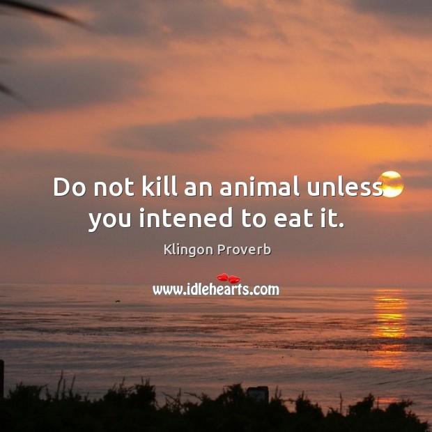 Do not kill an animal unless you intened to eat it. Image