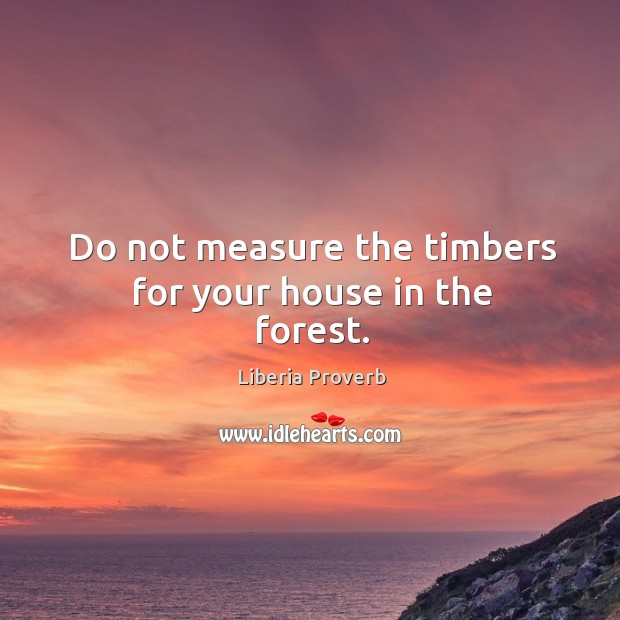 Do not measure the timbers for your house in the forest. Liberia Proverbs Image
