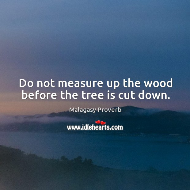 Do not measure up the wood before the tree is cut down. Malagasy Proverbs Image