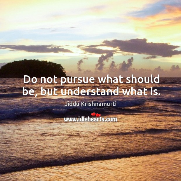 Do not pursue what should be, but understand what is. Image