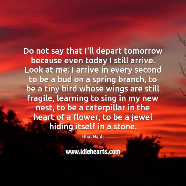 Do not say that I'll depart tomorrow because even today I still Flowers Quotes Image