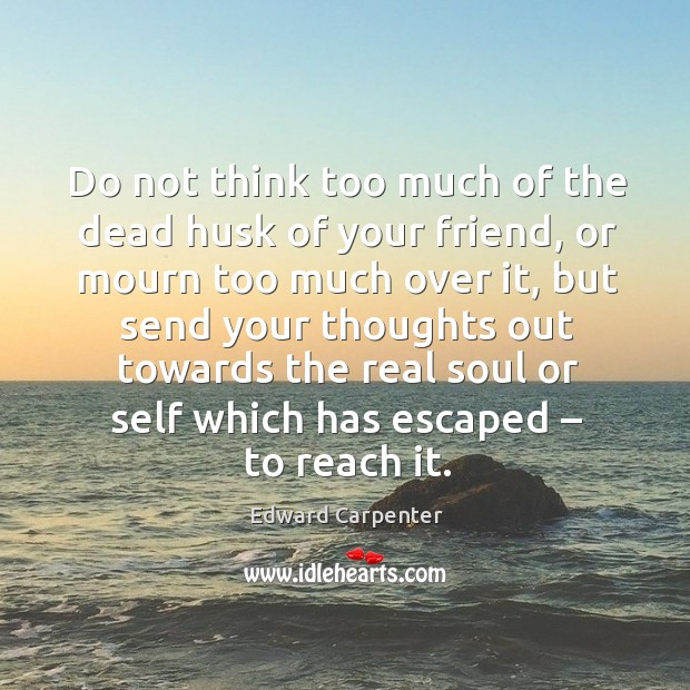 Do not think too much of the dead husk of your friend, or mourn too much over it Image