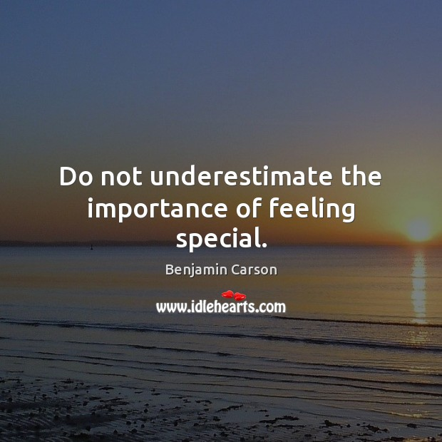 Do not underestimate the importance of feeling special. Underestimate Quotes Image