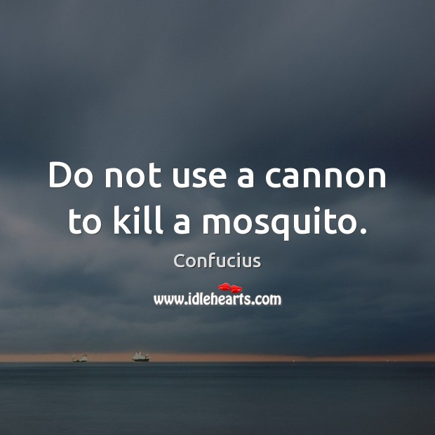 Do not use a cannon to kill a mosquito. Confucius Picture Quote