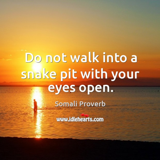 Do not walk into a snake pit with your eyes open. Somali Proverbs Image