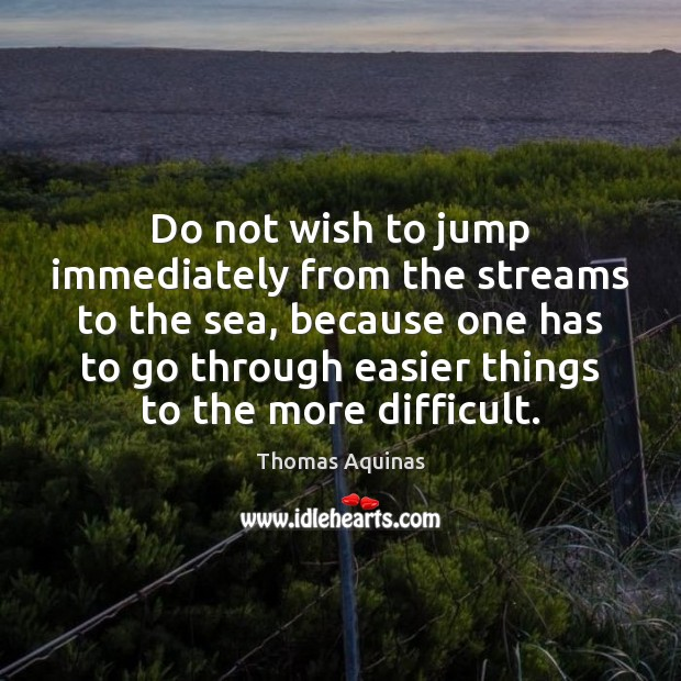 Image, Do not wish to jump immediately from the streams to the sea,