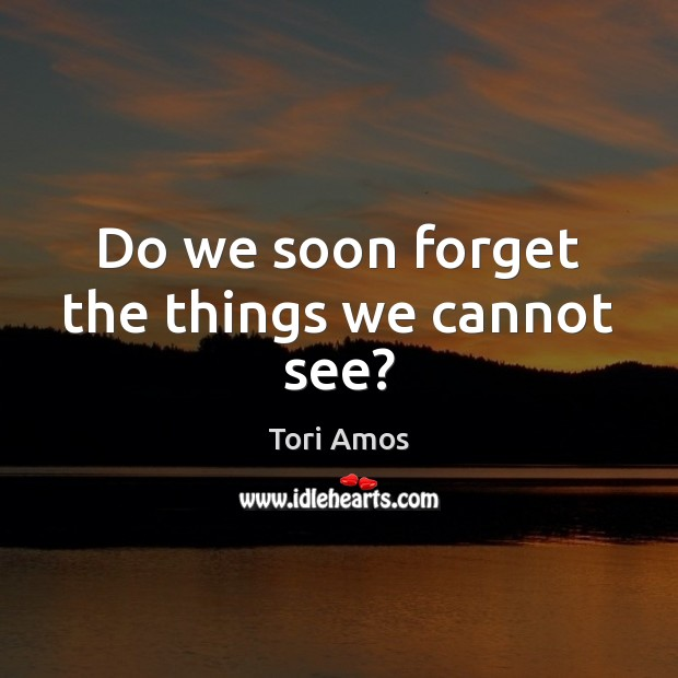 Do we soon forget the things we cannot see? Tori Amos Picture Quote