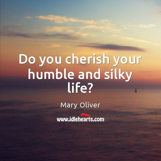 Do you cherish your humble and silky life? Image