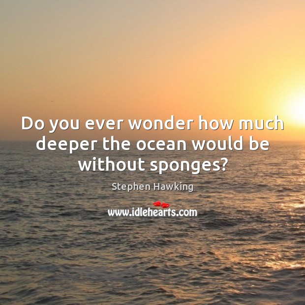 Do you ever wonder how much deeper the ocean would be without sponges? Stephen Hawking Picture Quote
