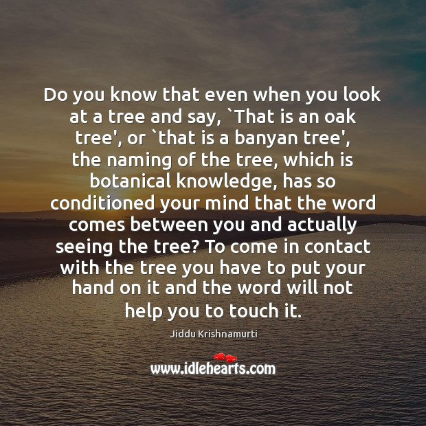 Do you know that even when you look at a tree and Image