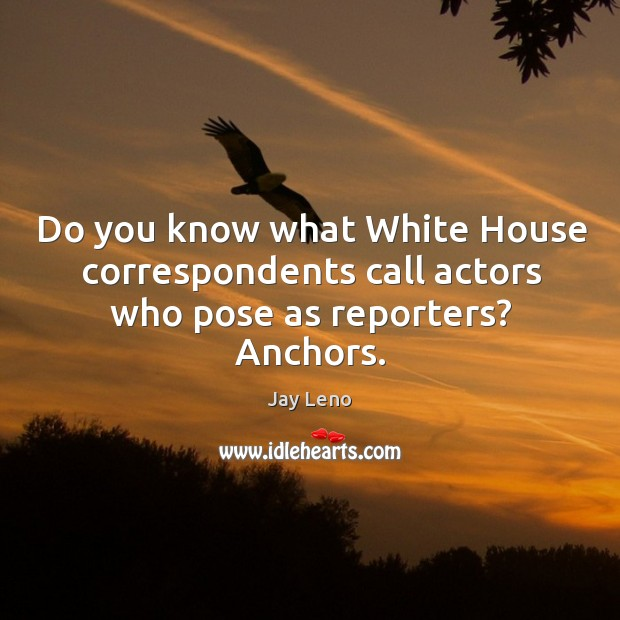 Do you know what white house correspondents call actors who pose as reporters? anchors. Image
