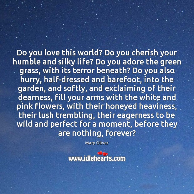 Image, Do you love this world? Do you cherish your humble and silky