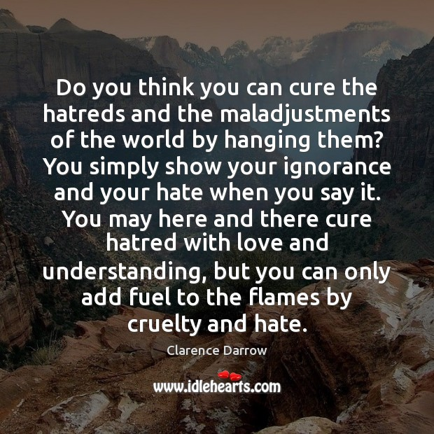Do you think you can cure the hatreds and the maladjustments of Image